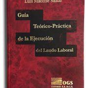 guia-teorica-practica-de-ejecucion-de-laudo-laboral-2
